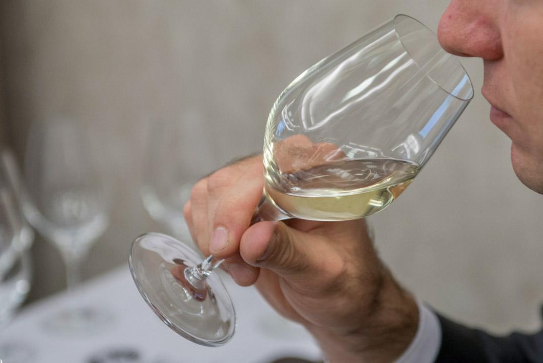 Kurs WSET Level 1 - degustacja wina.